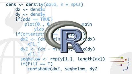 R program